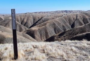 Badlands topology in the Panoche Hills Recreation Area