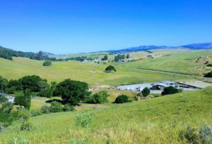View toward Salinas Road from the De Anza Trail.