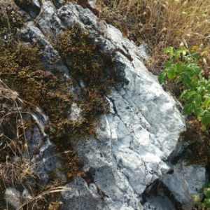 Marble on the Fremont Peak Trail.