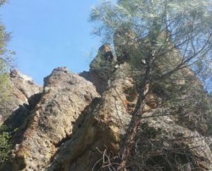 hiking san benito county pinnacles