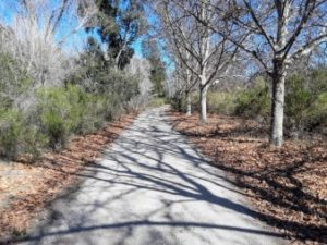 things to do in san benito county