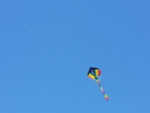 fly a kite in san benito county