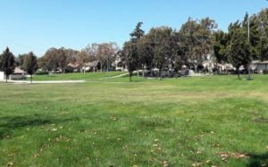 Dunne Park at West Street and Seventh Street, parks in hollister
